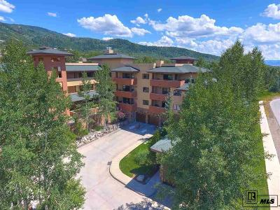 Steamboat Springs Condo/Townhouse For Sale: 2780 Eagle Ridge Drive #B102