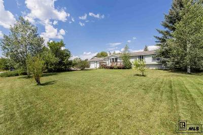 Steamboat Springs Single Family Home For Sale: 40532 Steamboat Drive