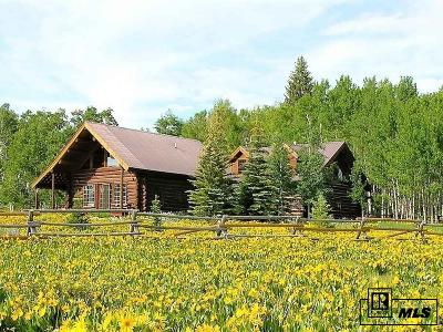 Routt County Single Family Home For Sale: 59005 Button Willow Dr.