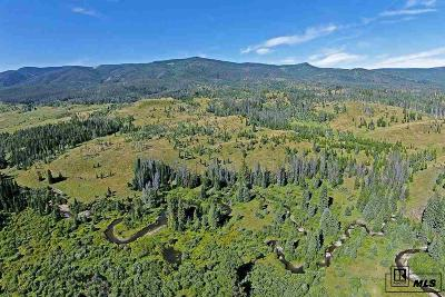 Routt County Farm For Sale: 17905 County Road 16