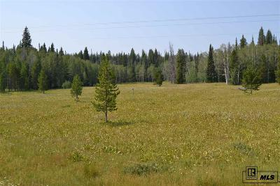 Routt County Residential Lots & Land For Sale: 60130 Crazy Horse Way