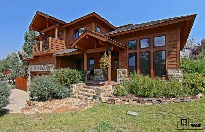 Steamboat Springs Single Family Home For Sale: 27429 Brandon Circle