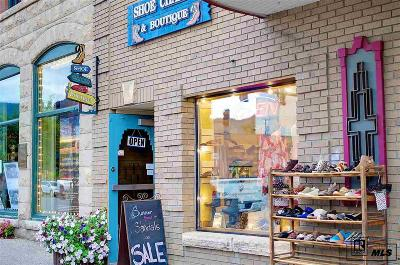 Steamboat Springs Commercial For Sale: 811 Lincoln Avenue