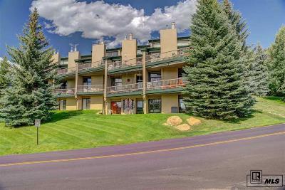 Routt County Condo/Townhouse For Sale: 2345 Ski Trail Lane #18