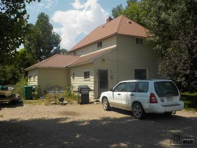 Routt County Single Family Home For Sale: 125 S Shelton Lane