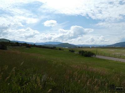 Steamboat Springs Residential Lots & Land For Sale: Tbd Elk River Road #Parcel 2