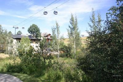 Steamboat Springs Condo/Townhouse For Sale: 2350 Ski Trail Lane #221