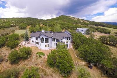 Steamboat Springs Single Family Home For Sale: 44300 Diamondback Way