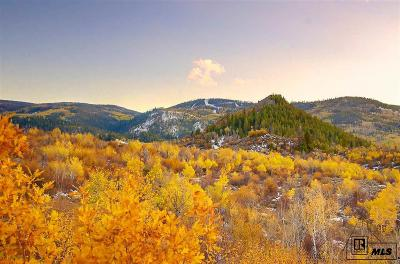 Routt County Residential Lots & Land For Sale: 23620 Fraysher Lane