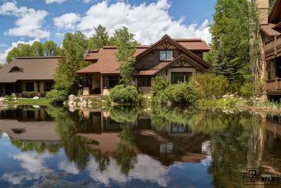 Steamboat Springs Single Family Home For Sale: 668 Retreat Place