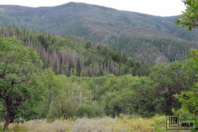 Steamboat Springs Residential Lots & Land For Sale: Tbd Pine Springs Trail