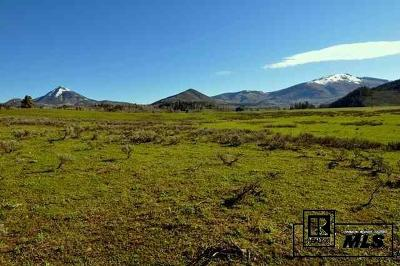 Routt County Residential Lots & Land For Sale: 26882 Aspen Court