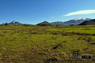 Routt County Residential Lots & Land For Sale: 26760 Aspen Court