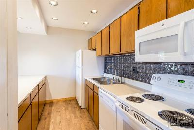 Steamboat Springs CO Condo/Townhouse For Sale: $235,000