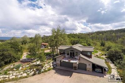 Steamboat Springs Single Family Home For Sale: 22015 Whitewood Drive W