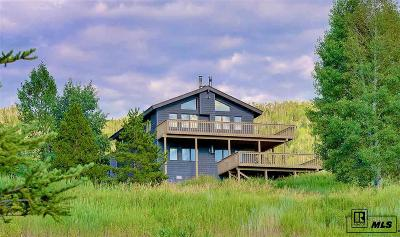 Steamboat Springs CO Condo/Townhouse For Sale: $450,000