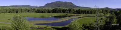 Steamboat Springs Residential Lots & Land For Sale: 41800 Snowy River Place