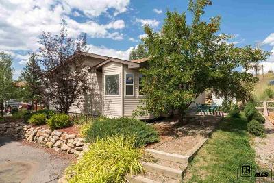 Steamboat Springs Single Family Home For Sale: 1496 Conestoga Circle