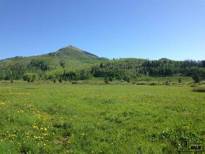 Routt County Residential Lots & Land For Sale: Lots 17-20 & 1/2 Of Adjoining Vacated Alley, Block 4