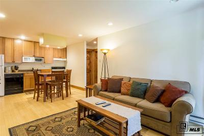 Steamboat Springs Condo/Townhouse For Sale: 1410 Athens Plaza - Alpha #2