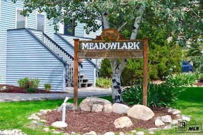 Steamboat Springs Condo/Townhouse For Sale: 3020 Village Dr #113 #113