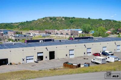 Steamboat Springs Commercial For Sale: 2620 S Copper Frontage #6
