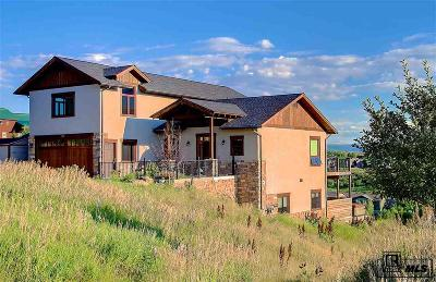Routt County Single Family Home For Sale: 529 Robin Court