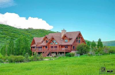 Steamboat Springs Single Family Home For Sale: 32255 Mack Lane #Lot 18