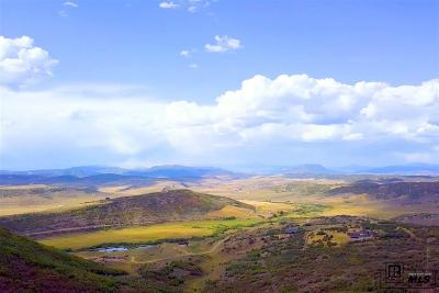 Steamboat Springs Residential Lots & Land For Sale: Tbd County Road 179, Lots 24, 25