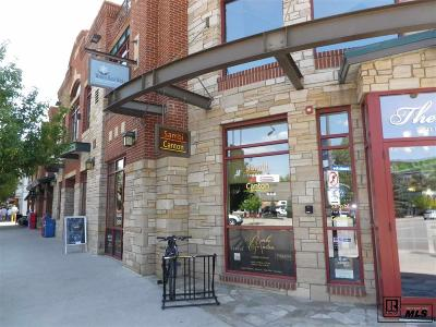 Steamboat Springs Commercial For Sale: 941 Lincoln Ave #100 E