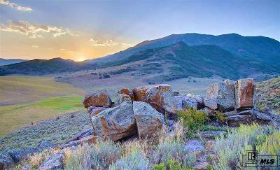 Steamboat Springs Residential Lots & Land For Sale: 25550 Prairie Pl. Lot 6