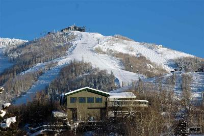 Steamboat Springs Single Family Home For Sale: 1820 Christie Drive
