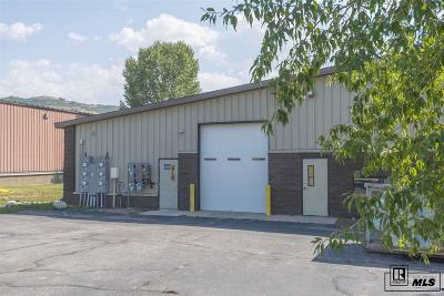 Steamboat Springs Commercial For Sale: 2673 Jacob Circle, #6