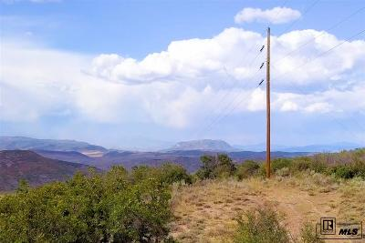 Steamboat Springs Residential Lots & Land For Sale: Tbd County Road 179 Lot 25
