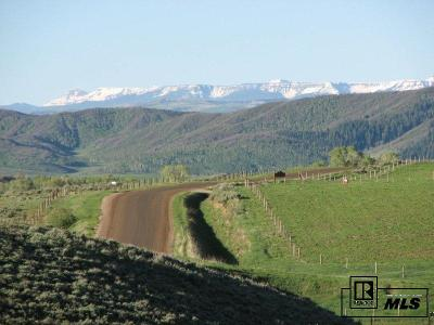 Steamboat Springs Residential Lots & Land For Sale: 25805 Prairie Pl. Lot 8