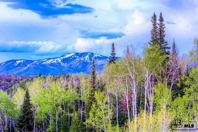 Steamboat Springs Residential Lots & Land For Sale: 28600 Skyline Dr