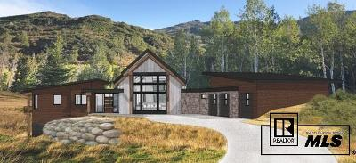 Steamboat Springs Single Family Home For Sale: 33825 Meadow Creek Dr.