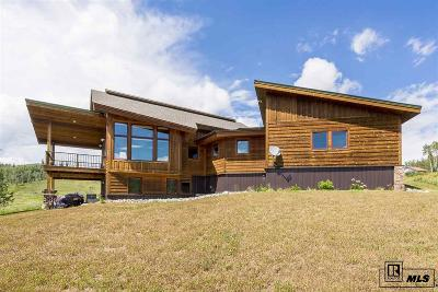 Routt County Single Family Home For Sale: 57545 Miners Dream Place