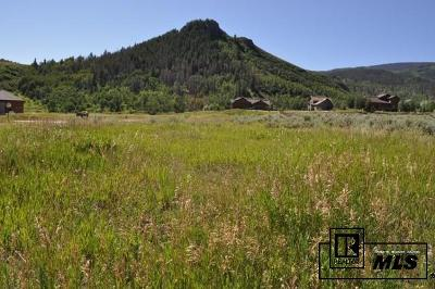 Routt County Residential Lots & Land For Sale: 23440 Postrider Trail