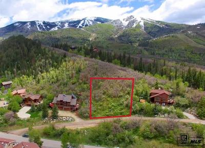 Steamboat Springs Residential Lots & Land For Sale: 1314 & 1316 Mira Vista Court