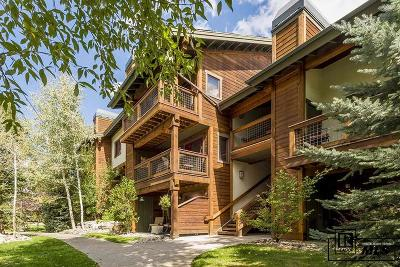 Steamboat Springs CO Condo/Townhouse For Sale: $273,500