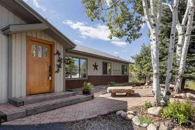 Steamboat Springs CO Single Family Home For Sale: $525,000
