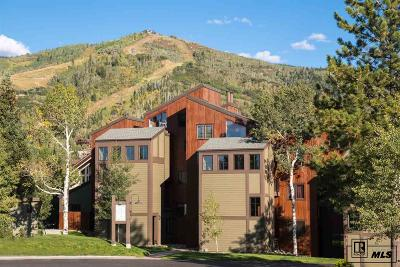 Steamboat Springs Condo/Townhouse For Sale: 2160 Mt. Werner Cir., E35 #3535
