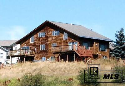 Steamboat Springs Condo/Townhouse For Sale: 516 Buena Vista Court