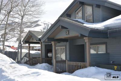 Steamboat Springs Condo/Townhouse For Sale: 1724 Ski Time Square Dr.