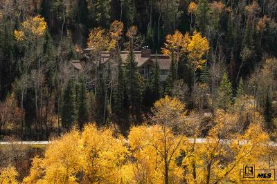 Routt County Single Family Home For Sale: 31645 Aspen Ridge Rd.