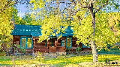 Steamboat Springs Single Family Home For Sale: 32290 Cr 38
