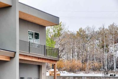 Steamboat Springs Commercial For Sale: 1680 Copper Ridge Court #Unit 1