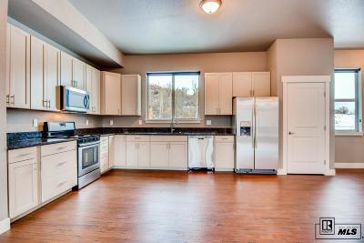 Steamboat Springs Commercial For Sale: 1680 Copper Ridge Court #Unit 2
