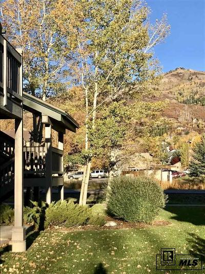 Routt County Condo/Townhouse For Sale: 1481 Morgan Court #102